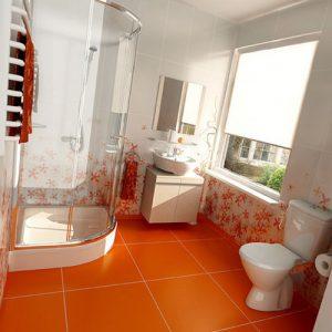 بهداشت توالت و حمام